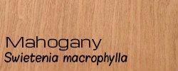 Mahogony for web