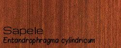 Sapele for web